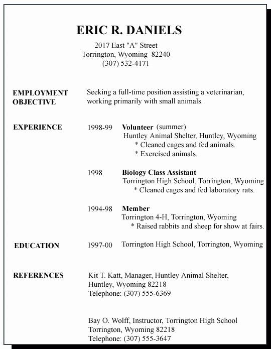 first job resume template best of sample for time seeker samples examples filtering Resume First Time Job Resume Examples