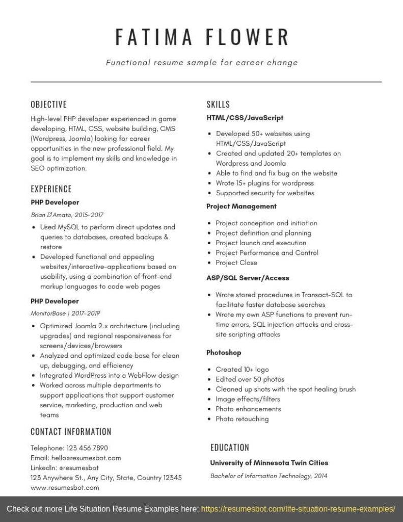 functional resume format templates and examples resumes bot chrono sample for career Resume Chrono Functional Resume