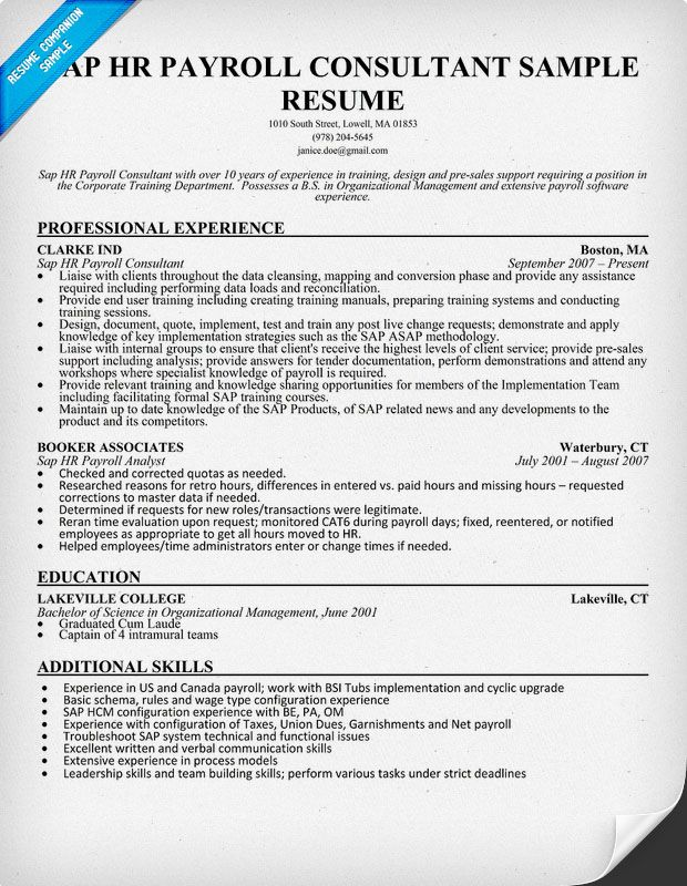 hr resume writing guide and tips professional examples erp implementation consultant Resume Erp Implementation Consultant Resume Format