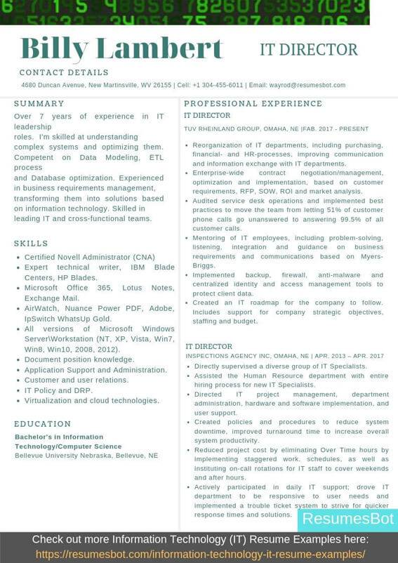 information technology director resume samples templates pdf resumes bot examples it Resume Information Technology Resume Examples 2020
