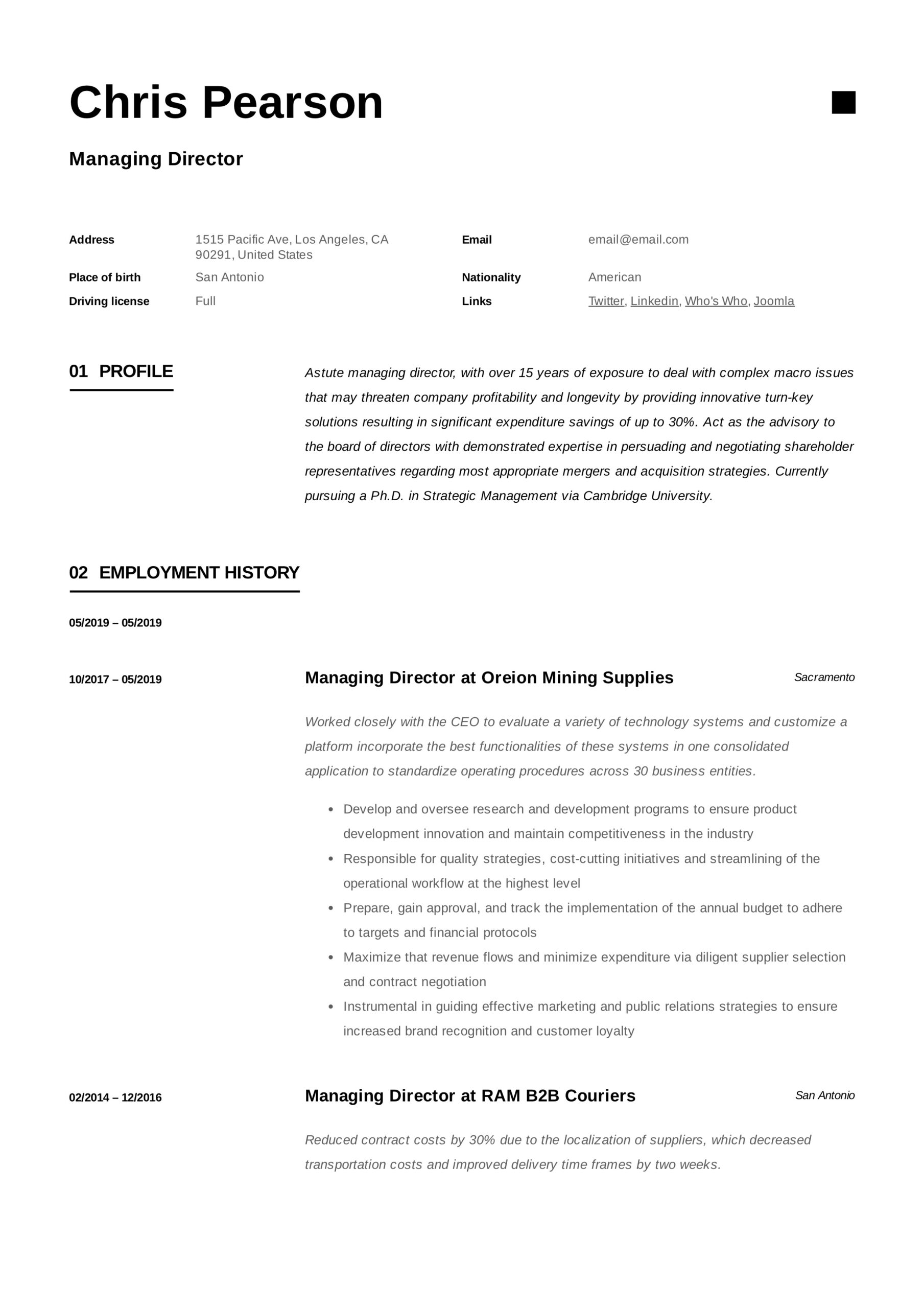 managing director resume writing guide examples pdf for board position sample example Resume Resume For Board Position Sample