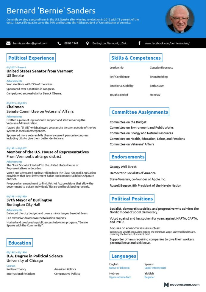 one professional résumé highlighting the competences of bernie create free resume Resume One Page Resume Builder