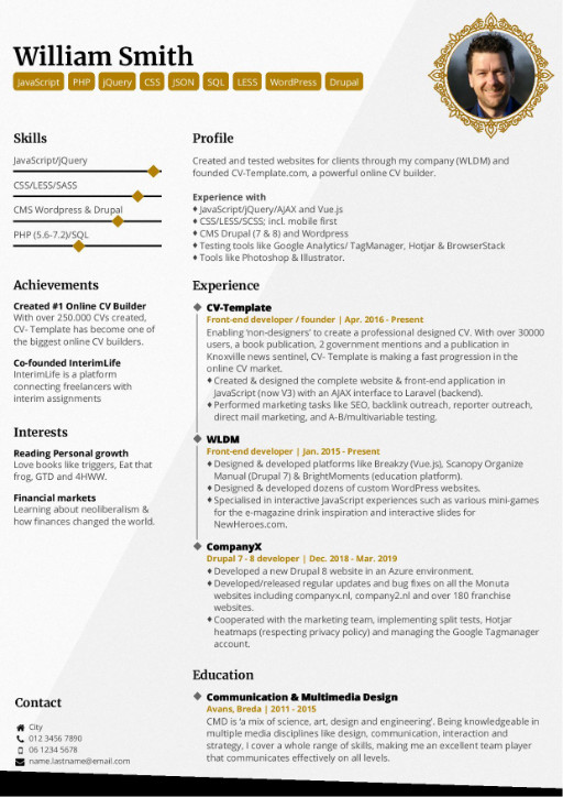 professional cv templates that make you stand out excellent resume elegant template rpi Resume Excellent Resume Templates
