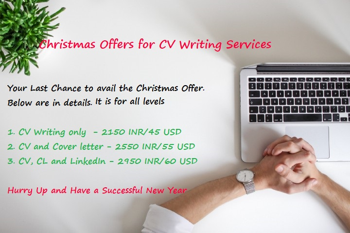 professional offer on resume writing cover letter linkedin profile services christmas Resume Linkedin Profile & Resume Writing Services