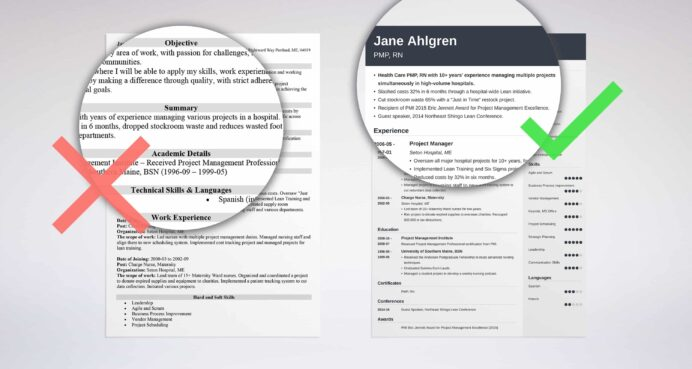 professional resume summary examples statements section of hard copy free graphic design Resume Summary Section Of Resume
