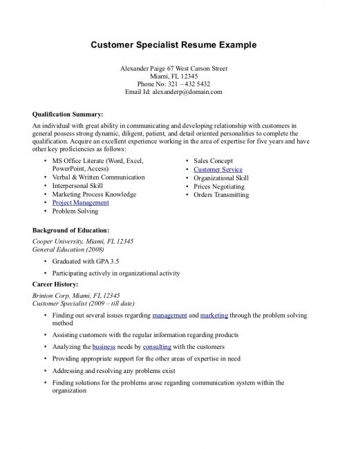 professional summary resume examples template free for customer service help umn see an Resume Professional Summary For Resume Customer Service