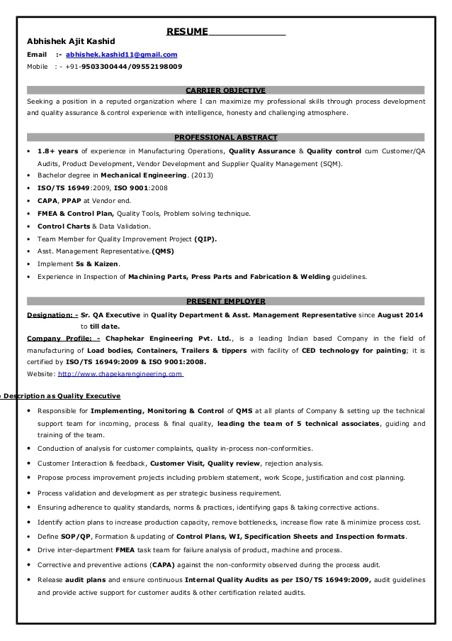 qa executive resume facility examples for older workers information technology free high Resume Facility Executive Resume