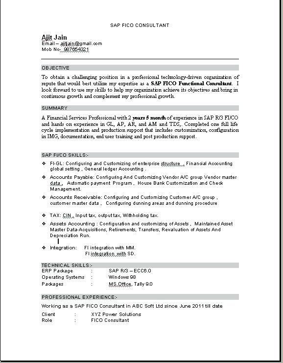 resume format for tally erp education pdf implementation consultant accounts payable and Resume Erp Implementation Consultant Resume Format