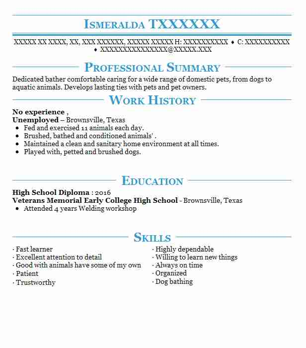 resume no experience skills good summary for with most successful template warehouse Resume Good Summary For Resume With No Experience