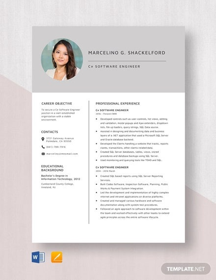 software engineer resume template free word pdf documents premium templates checkpoint Resume Resume Software Download Free