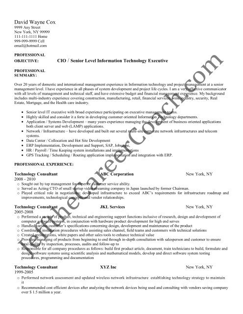 the technology consultant resume sample two in pdf information summary curriculum vitae Resume Information Technology Summary Resume