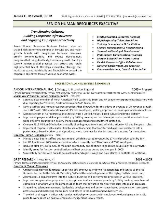 the top executive resume examples written by professional recruiter template senior Resume Senior Executive Resume Examples
