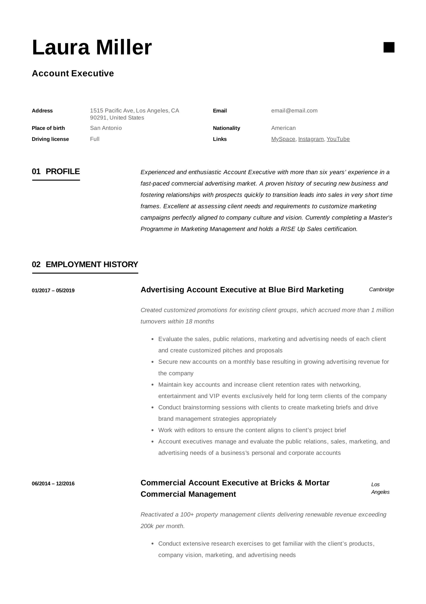 account executive resume writing guide templates pdf examples example direct care Resume Account Executive Resume Examples