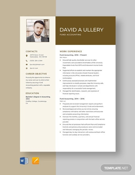 accounting resume templates pdf free premium examples fund template professional summary Resume Accounting Resume Examples 2020