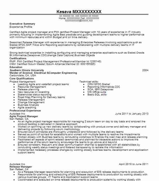 agile project manager resume example resumes livecareer program should you put volunteer Resume Agile Program Manager Resume