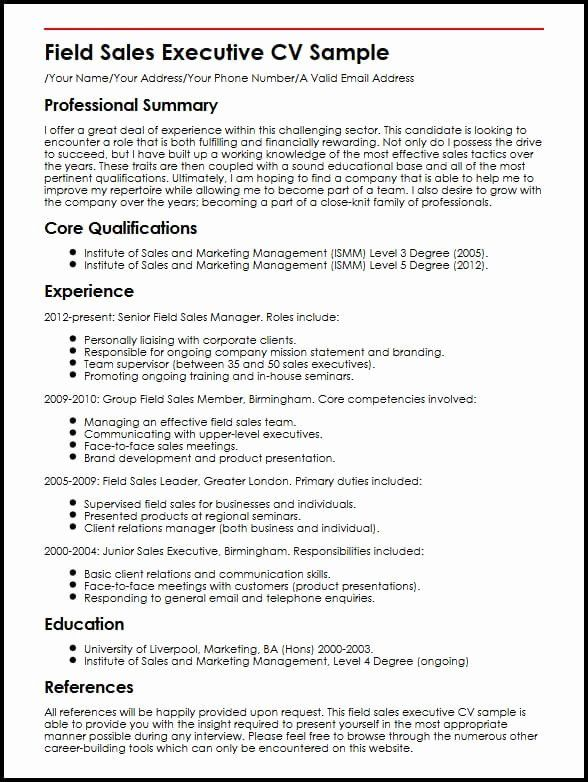 car resume objective lovely cv for executive help write paper examples statements Resume Car Statements Resume Examples