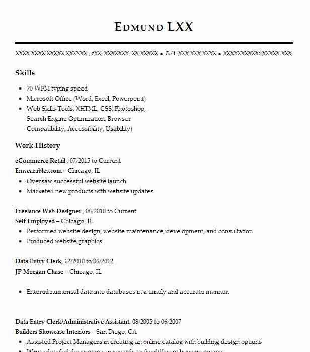 ecommerce retail resume example resumes livecareer description for paratransit job Resume Ecommerce Description For Resume
