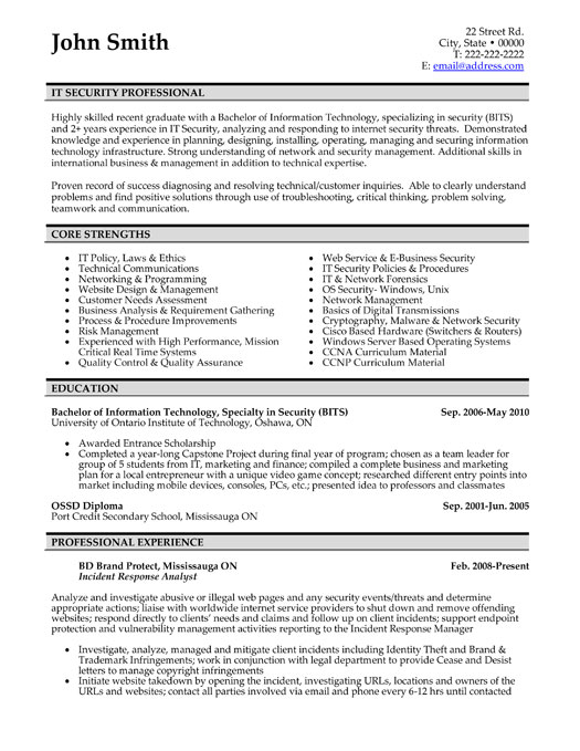 it security resume sample template professional experience profesisonal material mover Resume Professional Experience Resume Sample