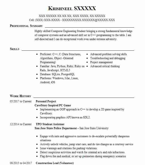 personal project resume example tinfo la jolla projects for leasing agent sample mft Resume Java Projects For Resume