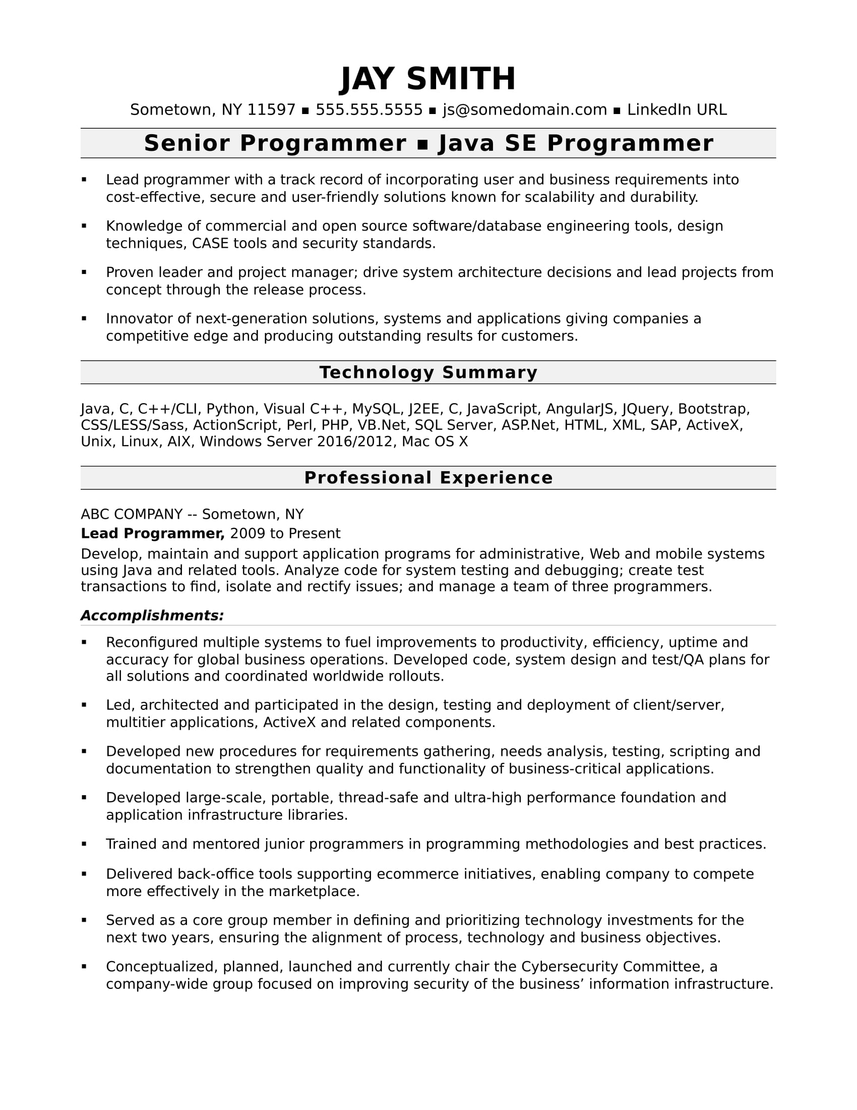 programmer resume template monster professional experience sample computer experienced Resume Professional Experience Resume Sample
