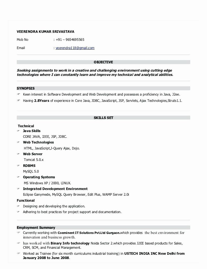 resume format for months experience in job samples projects graphic design size bbm Resume Java Projects For Resume