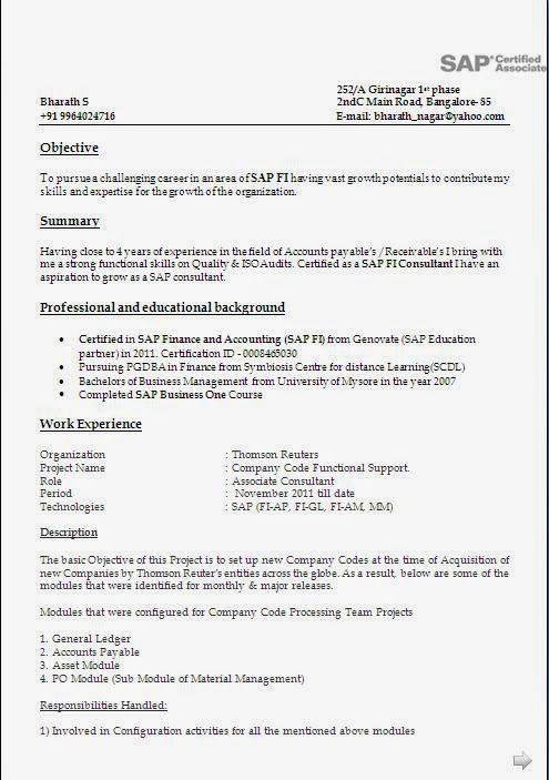 resume format year experience sample templates sap fico consultant years simple college Resume Sap Fico Consultant Resume 3 Years Experience