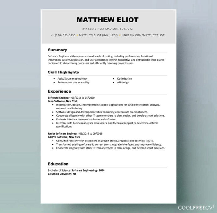resume templates examples free word software developer template example it best programme Resume Best Resume Examples Free