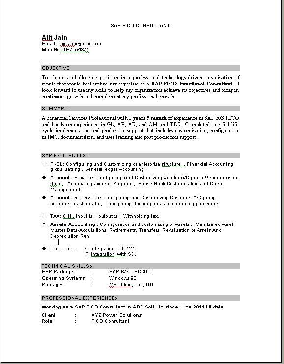 sap fico consultant resume sample education with years experience glazier examples Resume Sap Fico Consultant Resume 3 Years Experience