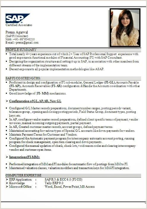 sap fico resume years experience format examples consultant aim for computer system Resume Sap Fico Consultant Resume 3 Years Experience