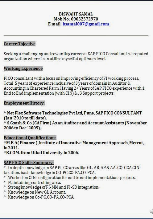sap fico support consultant resume march years experience format platoon leader job Resume Sap Fico Consultant Resume 3 Years Experience