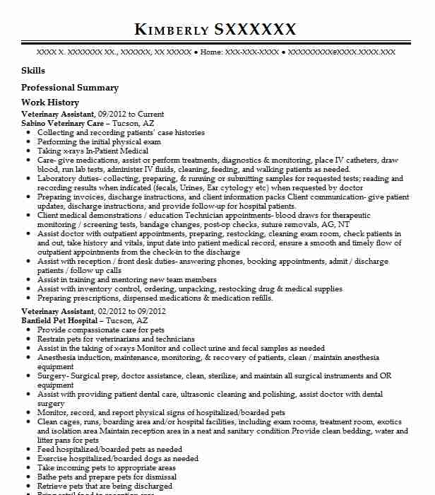 veterinary assistant examples resumes livecareer resume dance example format for Resume Veterinary Assistant Resume