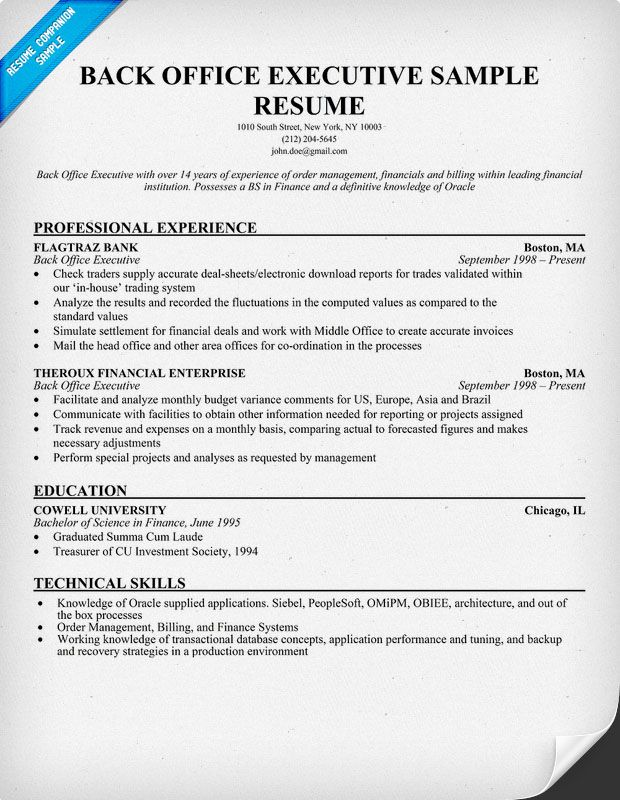 resume samples and to write companion job examples objective format for back office Resume Resume Format For Back Office Executive